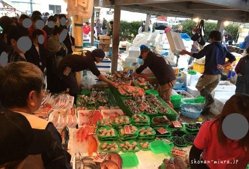 三崎朝市の鮮魚店の風景
