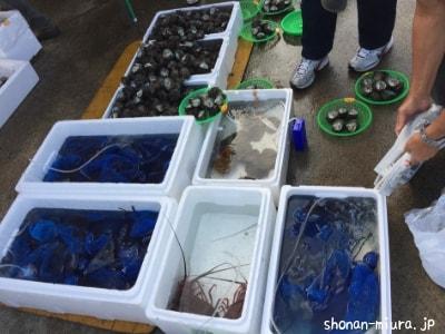 芦名ラッキーマーケット鮮魚①