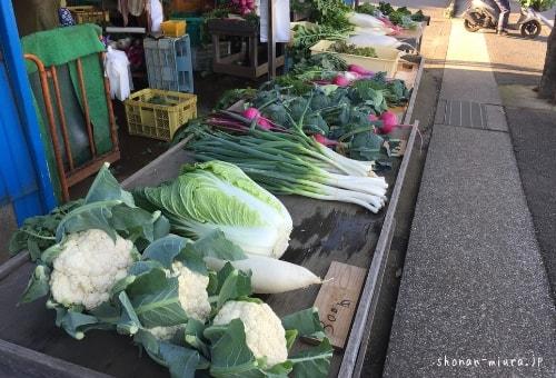 朝採れ三浦野菜