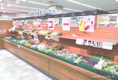 鈴木水産 三浦野菜