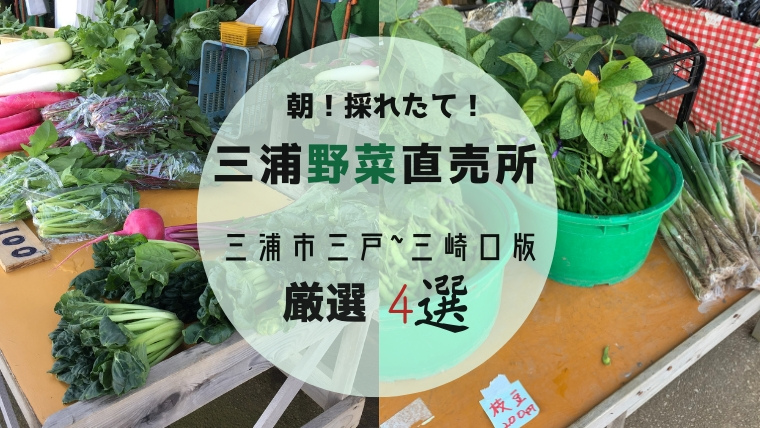 三浦野菜直売所 三戸~三崎口