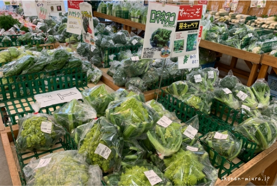 三浦野菜ロマネスコ
