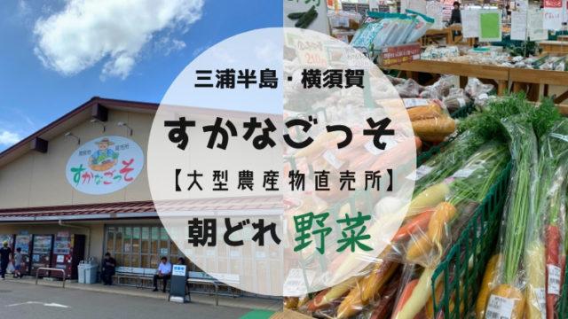 三浦半島道の駅すかなごっそ