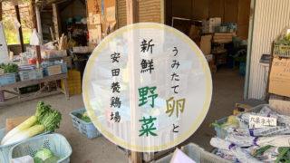安田養鶏場