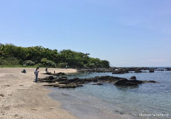佐島天神島の砂浜