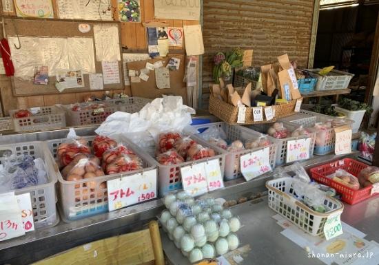 安田養鶏場の卵