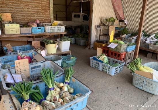 安田養鶏場の野菜