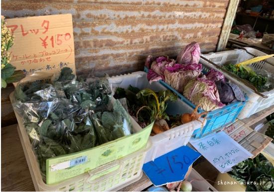 三浦野菜のアレッタと紫白菜
