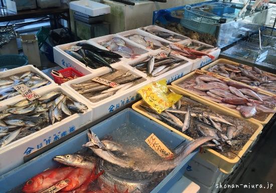 三浦半島海の幸直売所