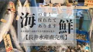 三浦半島鮮魚直売所【長井水産直売所】