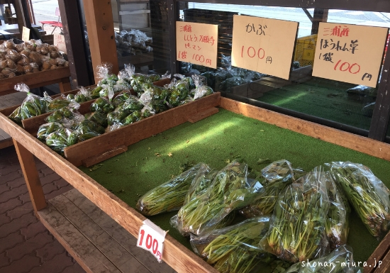 長井水産で新鮮野菜
