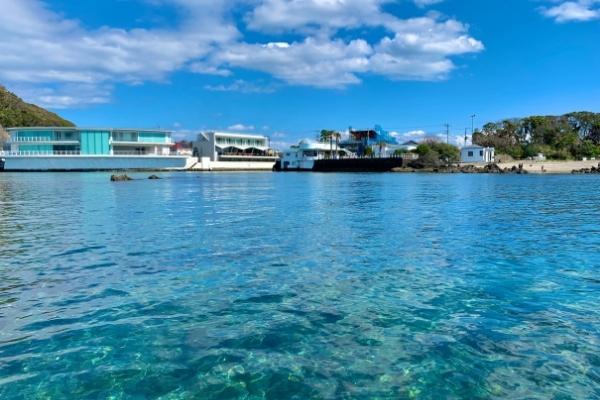 佐島天神島の海