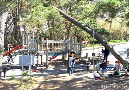 葉山公園アスレチック施設