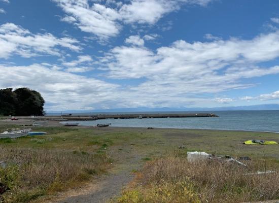 三浦半島無料キャンプ