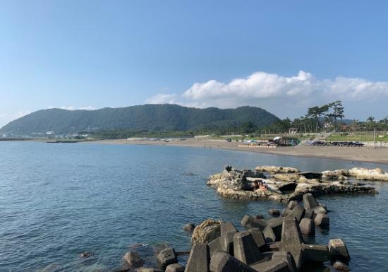 葉山大浜海岸で磯遊び
