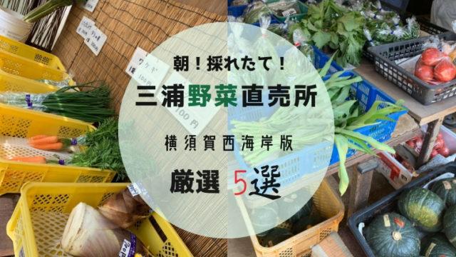 三浦野菜直売所 横須賀市