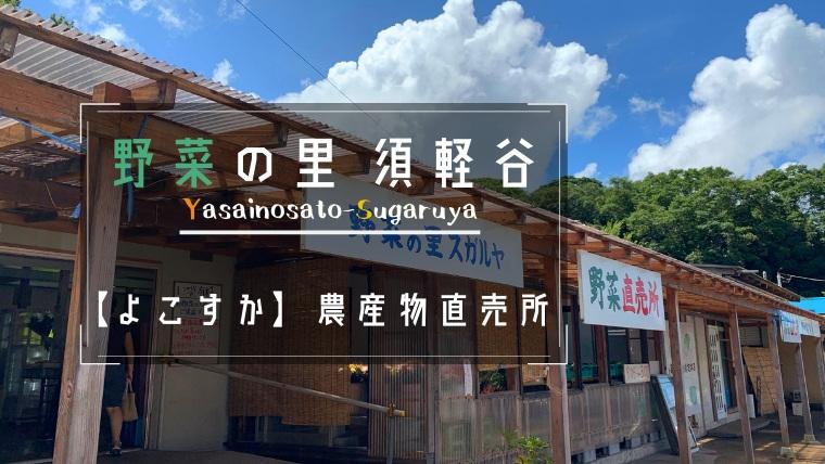 三浦野菜横須賀『野菜の里スガルヤ』