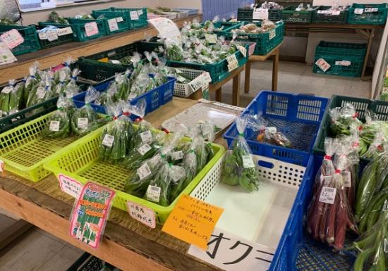 野菜の里須軽谷 夏野菜