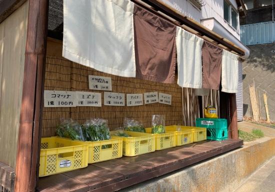 三浦半島野菜直売