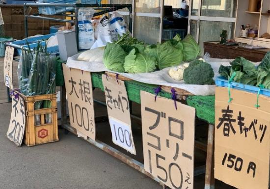 横須賀市長井 原田農園