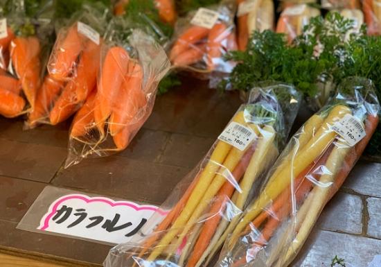 三浦野菜 カラフル人参