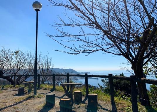 披露山公園の高台