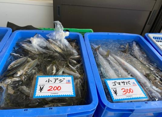佐島漁港前の鮮魚直売所