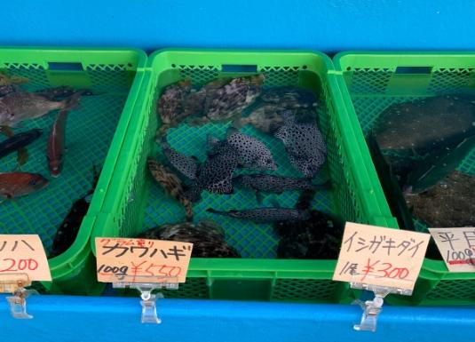 佐島の活魚店『大翔水産』
