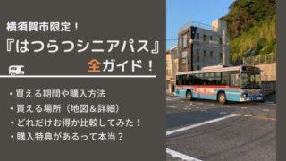 横須賀市はつらつシニアパス購入ガイド
