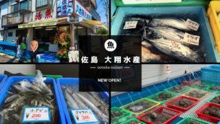 佐島 大翔(おおたか)水産
