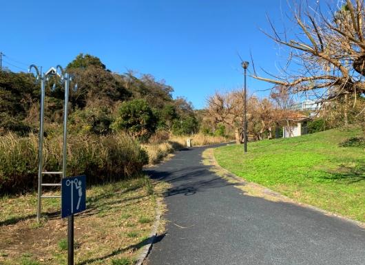 佐島の丘公園 健康ぶら下がり器