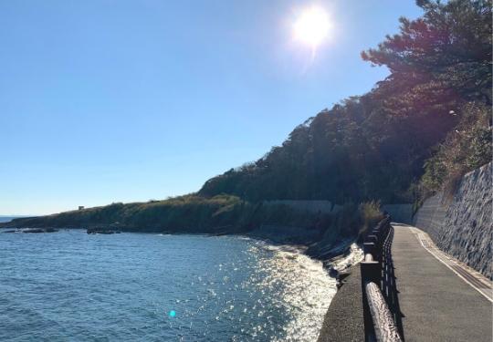 観音崎公園海岸お散歩コース