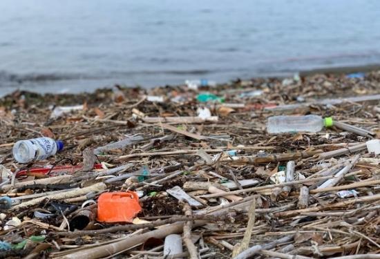 三浦半島プラスチックゴミ