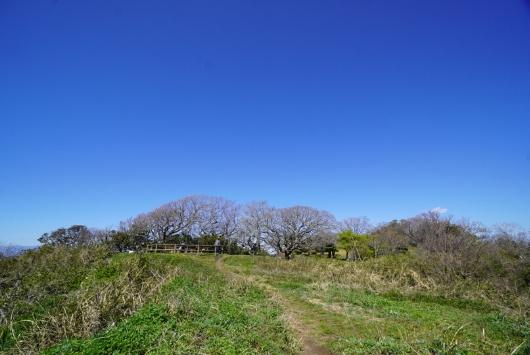 大崎公園先端