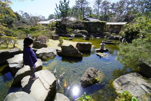 しおさい公園の池