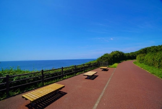 城ケ島公園レッドロード