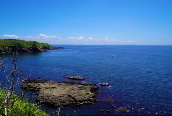 城ケ島の高台から見た景色