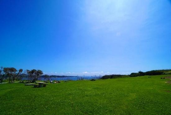 城ケ島公園 うみのね広場