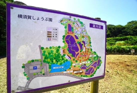 しょうぶ苑MAP