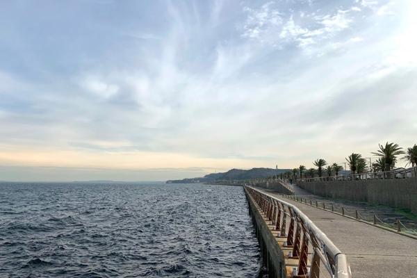 馬堀海岸防波堤