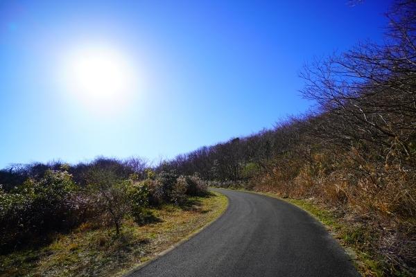 横須賀めぐりの森