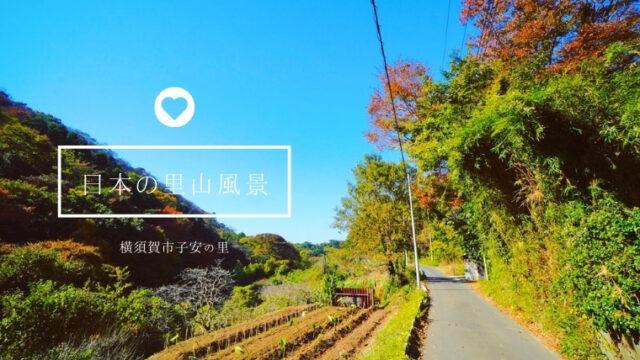 子安の里お散歩コース