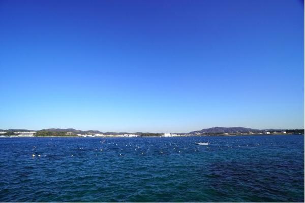 長井から小田和湾