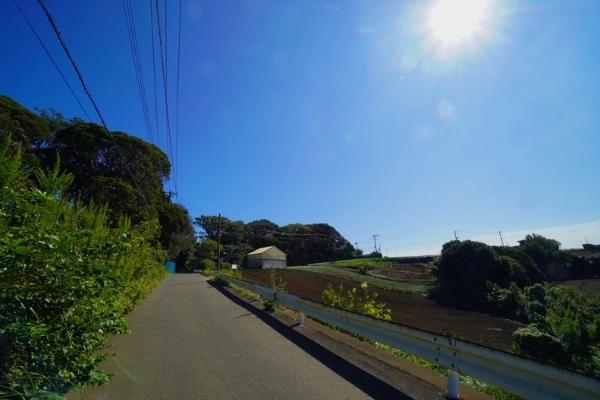 津久井観光農園に続く道