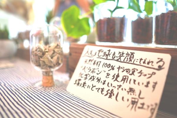 エコルシェ横須賀