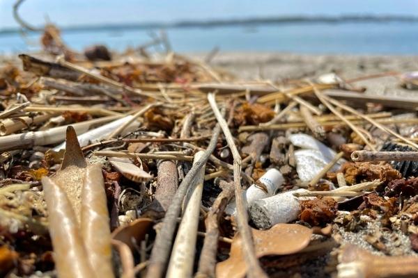 三浦半島プラスティックゴミ